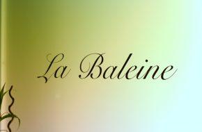 La Baleine / restaurant